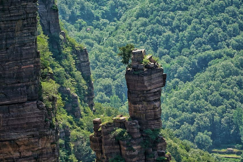 China Photos Rocky Mountains Rock - Object Zoom In On A Hike Mountain Goat Enjoying The Sights Outdoors Urban Nature Summer Green Walking Around Nature Wildlife & Nature Taking Photos Streamzoofamily A Bird's Eye View