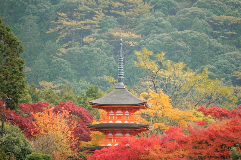 View of temple in forest during autumn