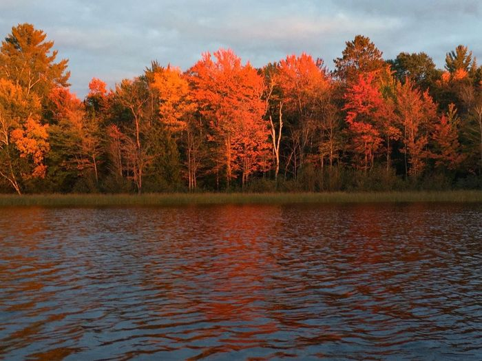 Autumn Change Tranquility Scenics Lake Nature Season  Northern Wisconsin Waterfront Beauty In Nature Reflection Outdoors Sky Tranquil Scene Tree Non-urban Scene Fall Color Lakelife Treeswithfallcolor
