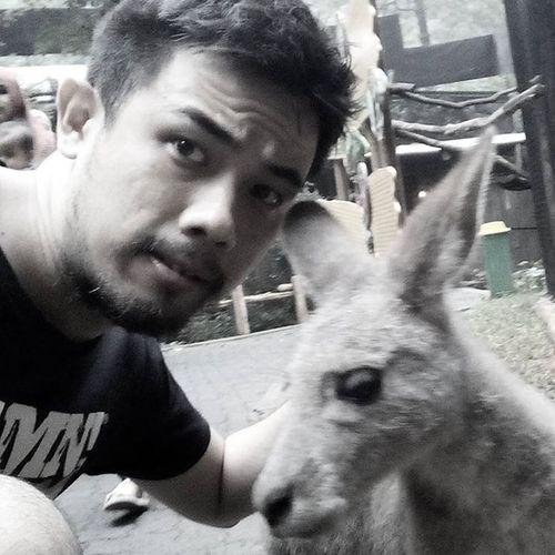Selfie with baby kangaroo!! Zoo Animal Babyzoo Safari INDONESIA Travel