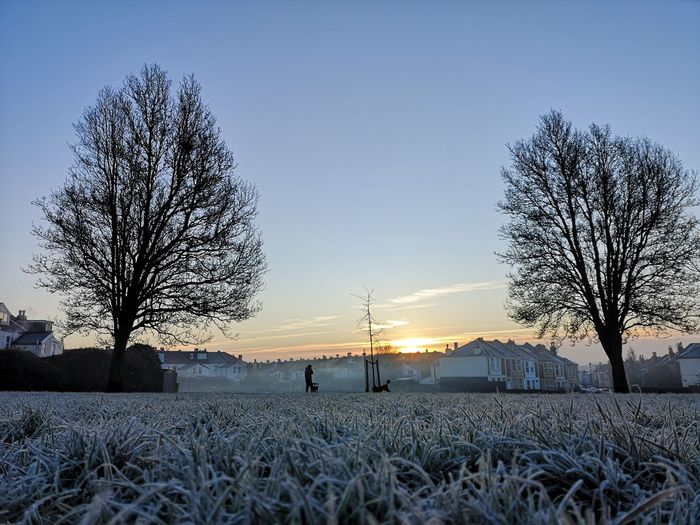 Bare trees on snow covered field against sky during sunset