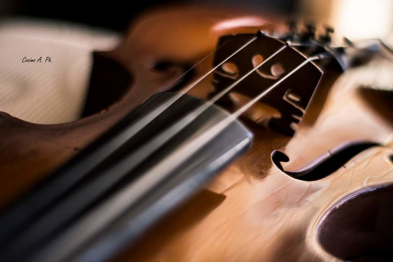 music, musical instrument, musician, classical music, violin, musical instrument string, playing, string instrument, bow - musical equipment, arts culture and entertainment, cello, performance, indoors, one man only, classical musician, wood - material, performing arts event, cellist, skill, only men, violinist, close-up, one person, dedication, classical concert, plucking an instrument, people, adults only, adult, human hand, day, young adult
