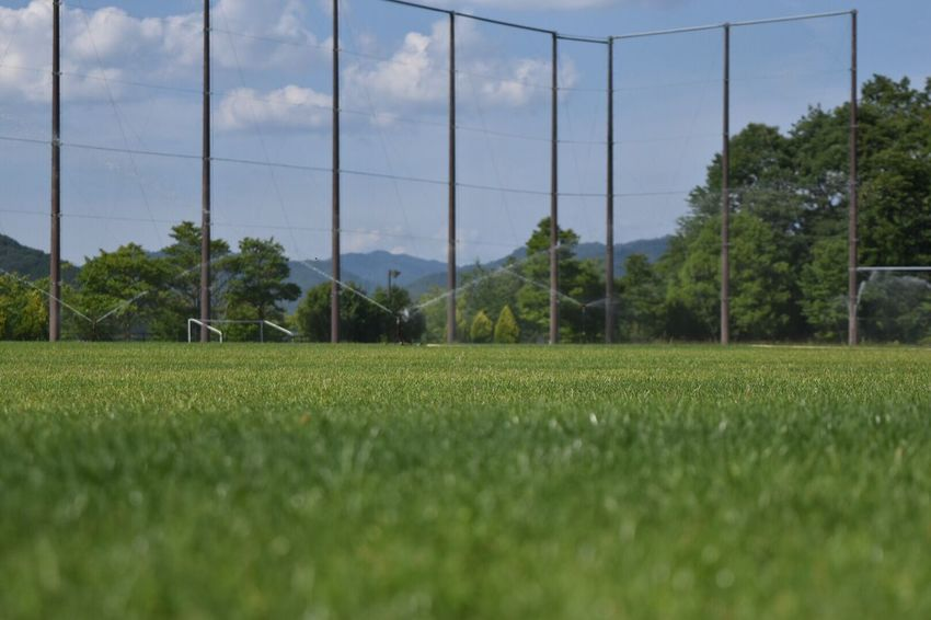 Soccer Sport Grass Playing Field Soccer Field Field Tree Growth No People Sky Green Color Day Nature Competitive Sport Outdoors Goal Post Competition