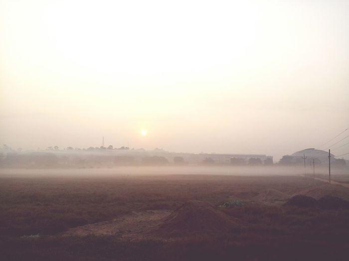Morning bliss First Eyeem Photo