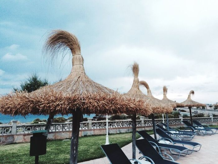 Sonnenschirm Crazy Frisur Palmen