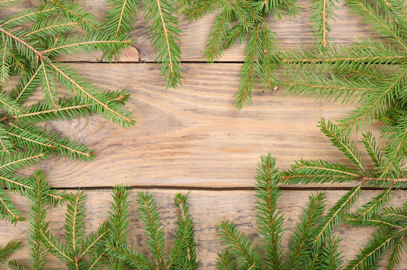 Fir branches on a wooden background with place for text. top view. copy space.