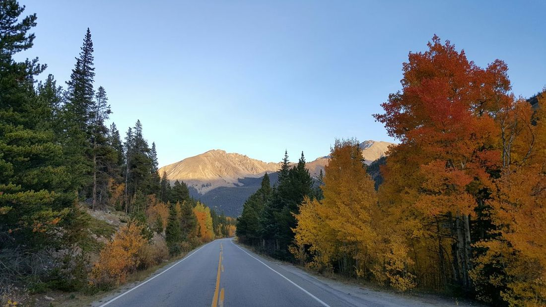 Check This Out No Edits No FiltersRoad Mountains Fall Leaves Fall Color Aspens Colorful Colorado Samsung Galaxy S6 Edge Samsungphotography