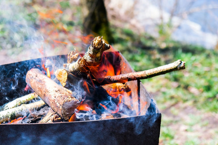 Firewood burning on a brazier. bbq on the garden. smoky bonfire. fire for grill. summer leisure