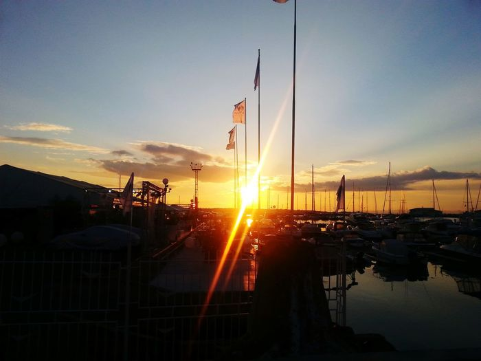 Sunset Harbour Enjoying The Sun
