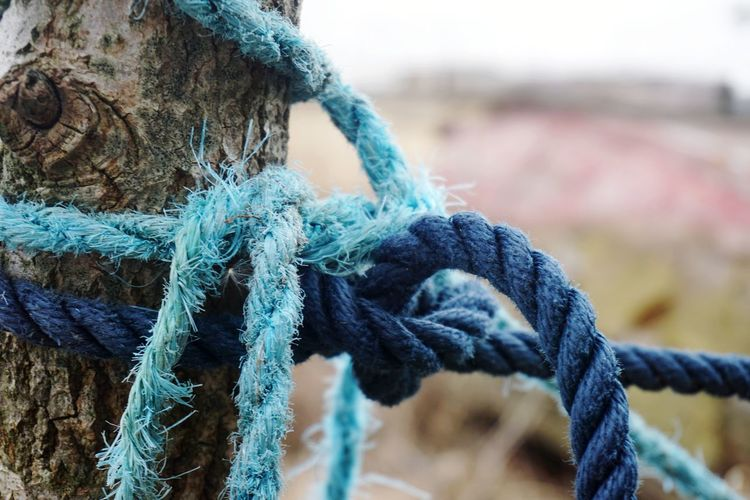 blue ropes Rope Ropes Blue EyeEm Selects Wool Strength Fishing Equipment Rope Close-up Harbor Buoy Commercial Dock Tied Knot Cleat