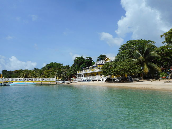 Honduras Roatan Architecture Bay Islands Beach Beauty In Nature Blue Built Structure Cloud - Sky Day Nature Nautical Vessel No People Outdoors Palm Tree Scenics Sea Sky Tranquility Tree Water Waterfront