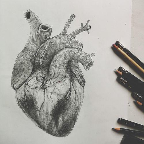 art Art Heart