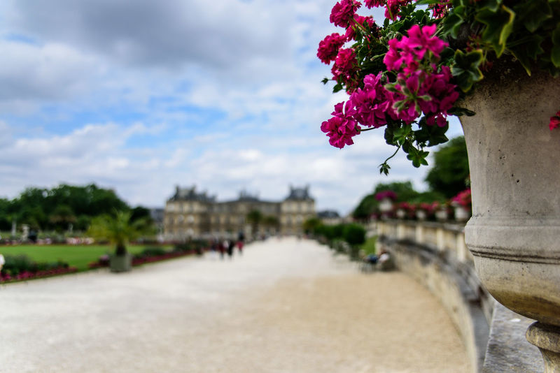 Cloud - Sky Flower Jardin Du Luxembourg Luxembourg Garden Paris Paris ❤ Paris, France  Sky Sky And Clouds