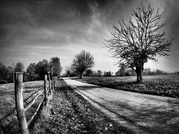 Somewhere near Asti piedmont italy Ig_asti_ Piemonte_super_pics Ig_biancoenero _world_in_bw Dsb_noir Eranoir Bnwitalian  Excellent_bnw Ig_worldbnw Vivobnw Igclub_bnw Loves_noir Igs_bnw Ig_contrast_bnw Master_in_bnw  Top_bnw Tv_pointofview_bnw Loves_united_asti Ig_italia_ Featuredmeinstagood Asti Photowall Allshots_ Hot_shotz Phototag_it visualsoflife shadowhunters livecountry vivotorino masters_in_bnw