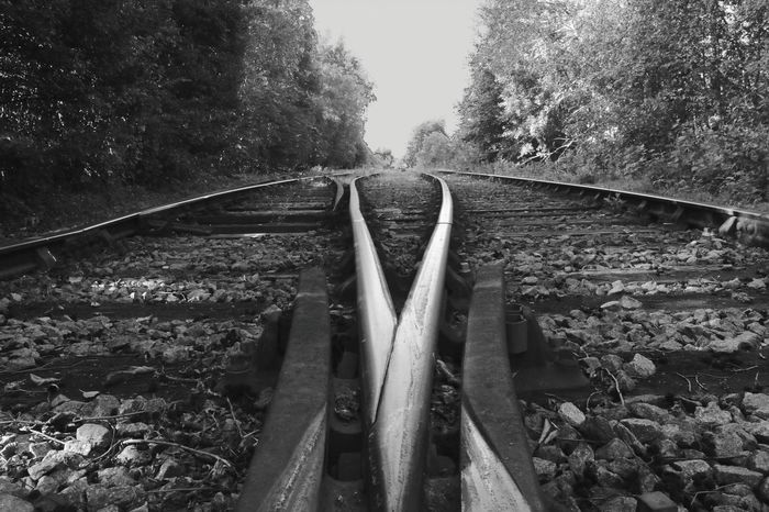 Railroad Track Tree Connection Rail Transportation No People Day Outdoors Nature EyeEmNewHere Goole Blackandwhite Railway Lines EyeEm EyeEm Best Shots EyeEm Gallery EyeEmBestPics EyeEm Best Shots - Black + White