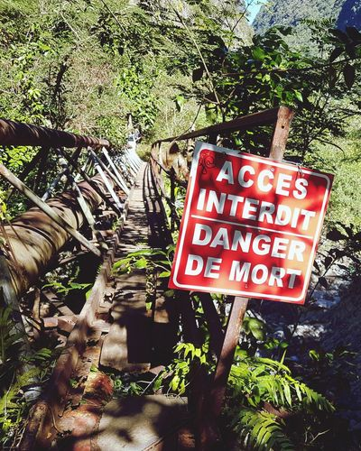 Reunion Island EyeEmNewHere Trail Running Sentier Parasite Plant Bridge River Close-up Warning Sign Stop Sign Do Not Enter Sign Warning
