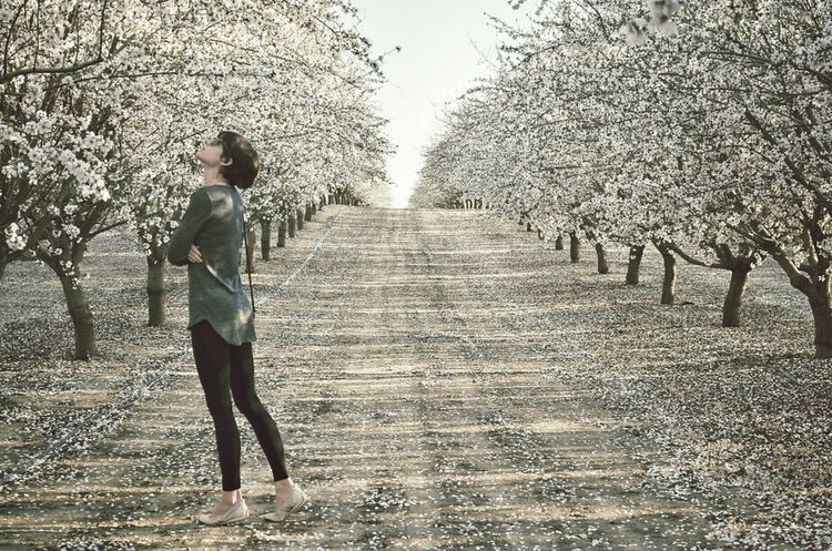 Sea of flowers. Flowers Lost Places The Path Less Traveled By Pointer Footwear On The Road With BlaBlaCar