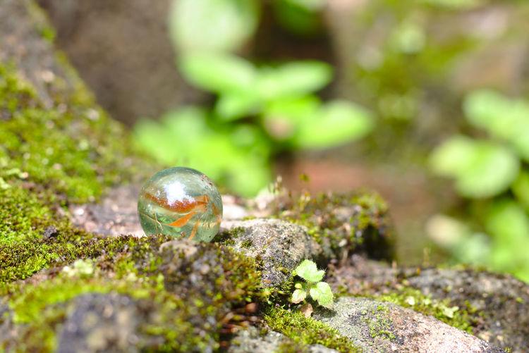 A crystal ball