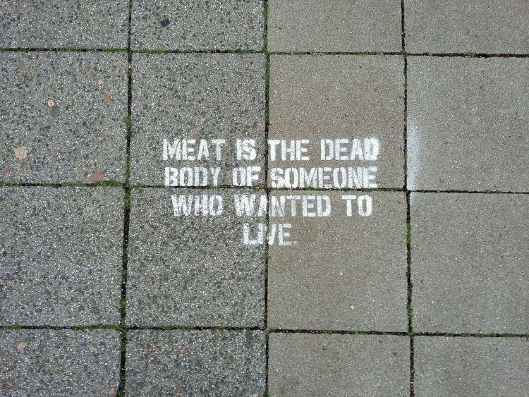 One Message. · Hamburg Germany Vegetarianism Vegetarian Vegan Meat No Meat Save Animals Life Responsibility Accountability Important Things In Life Street Art Foodforthought Urban Exploration