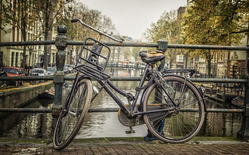 Amsteram Autumn Drachten Fahrrad, Bike, Bridge, Brücke Fluss Herbst Nederland, Domburg River Velo Water