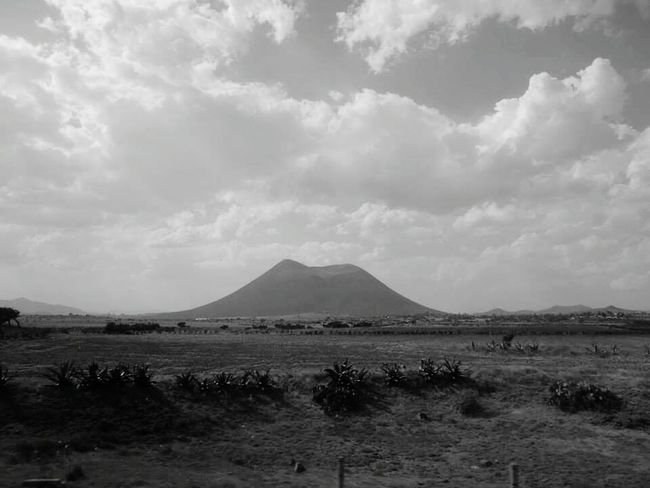 Blackandwhite Black And White Photography Lines Maguey Travel Photography Ranch Life On The Road Travel In Mexico Rural Collection Nature_collection Nature Rural Scenes Mexico Sky White Clouds Fields Trees On Way To Mexico City Rural Mexico Mountains In Background Mountains And Sky