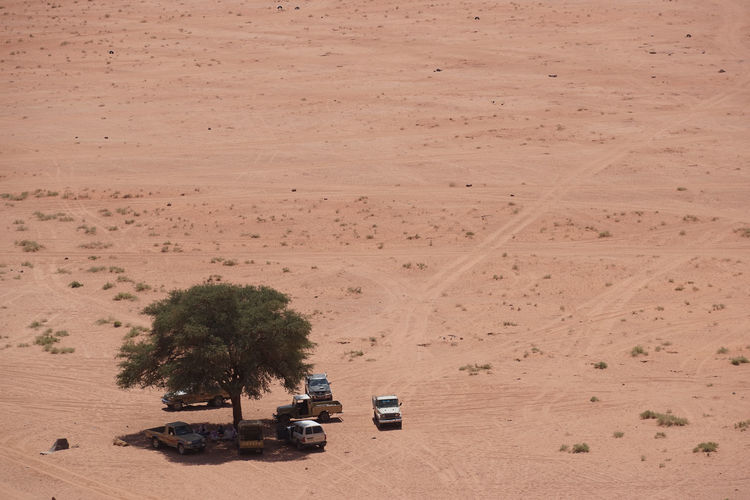 High Angle View Of Off-Road Vehicles By Tree At Wadi Rum