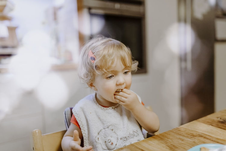 Baby girl eating cookie – Kempen, Germany Baby Chair Eating Food And Drink Happy Hungry Sitting Babies Only Babygirl Babyhood Bib Caucasian Child Childhood Dining Table Front View Germany Headshot Kitchen Lens Flare Portrait Table Toddler  Unhealthy Eating Waist Up