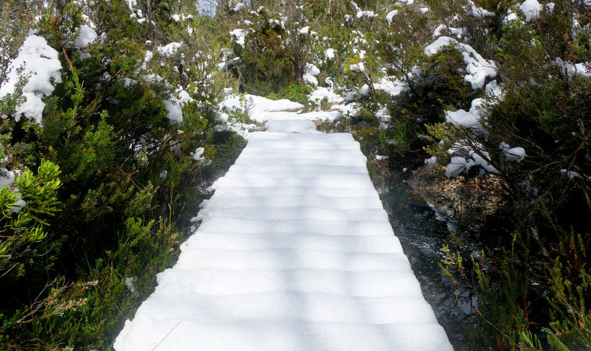 Lake St Clair, Tasmania Cradle Mountain-Lake St Clair National Park Tasmania Direction The Way Forward No People Footpath Beauty In Nature Outdoors Diminishing Perspective Snow Snow Covered Boardwalk Sunny
