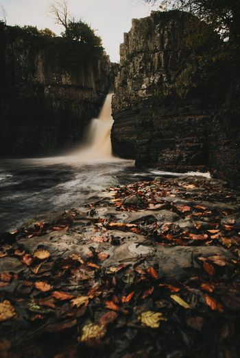 Autumn leaves lay on the rocks below High Force Waterfall on a dull day in Middleton in Teesdale Autumn Nature Beauty In Nature Outdoors No People Change Water Scenics Rock - Object Day Tree Waterfall Atumn Leaves High Force Waterfall Waterfalls England