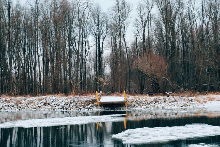 Nature Tranquility Reflection Water Bare Tree Winter Lake Tree Beauty In Nature Tranquil Scene Cold Temperature No People Day Outdoors Snow Scenics Frozen Lake Sky EyeEm Best Shots Vscocam Fujifilm_xseries