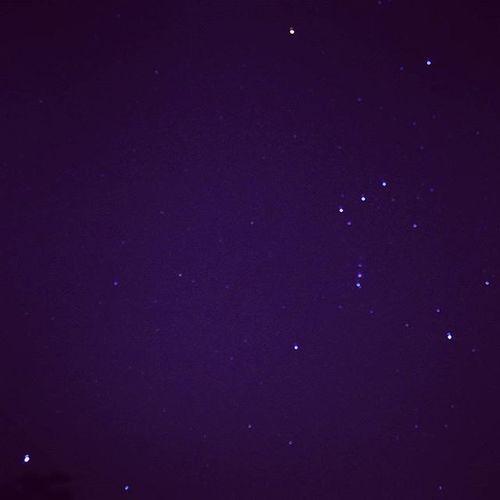 昨日、はたと目が覚めたので数撃ちゃ当たる方式で3時までシャッター切ってたんだけど、流星写らず。 でも肉眼でちっちゃいのいくつか確認できたから満足〜😃💕 . オリオン座 Orion Sky Stars ベテルギウス シリウス Betelgeuse Sírius 星の動きははやい Autumnsky Nightsky SkyFullOfStars