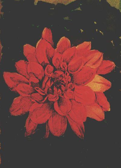 Art Art, Drawing, Creativity Flower
