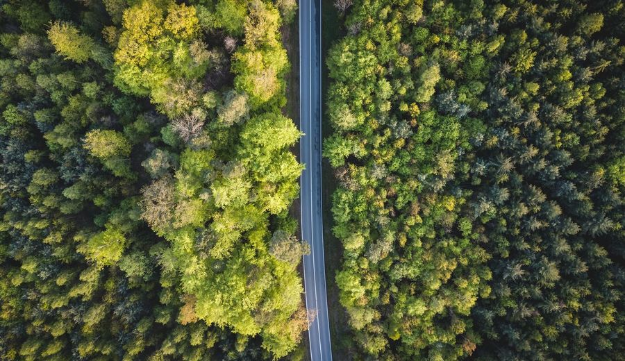 Drone photography of a road through the forest Drone  Aerialphotography Mavicpro Dji Drohne Dronephotography Nature Droneshot Dronepilot Photography Drones Camera Landscapephotography Dronesdaily Fromwhereidrone Wald Badenwürttemberg Stuttgart Spring Trees Street Landscape Woods Forest Tree Backgrounds Full Frame High Angle View Leaf Plant First Eyeem Photo My Best Photo