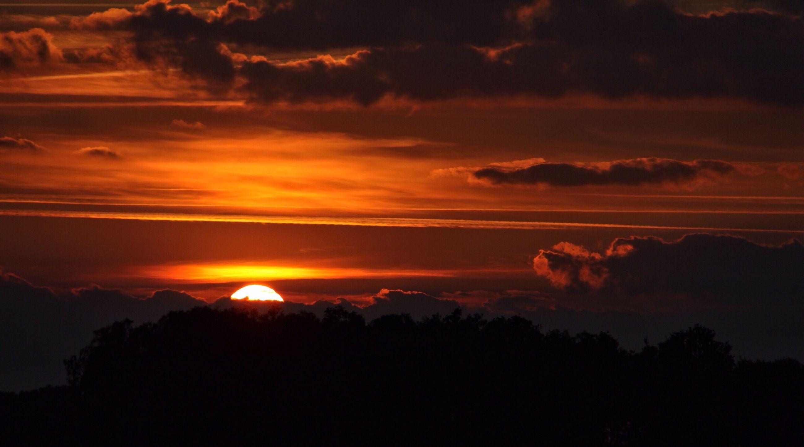 sunset, scenics, silhouette, tranquil scene, beauty in nature, tranquility, sun, sky, orange color, idyllic, nature, cloud - sky, majestic, sunlight, tree, landscape, cloud, dramatic sky, sunbeam, outdoors