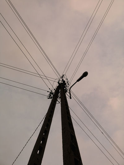 Bird Telephone Line Technology Silhouette Electricity  Sky Electricity Tower Power Cable Power Line  Wire Electrical Grid Electrical Component High Voltage Sign Power Supply Cable Electric Pole Telephone Pole Electricity Pylon