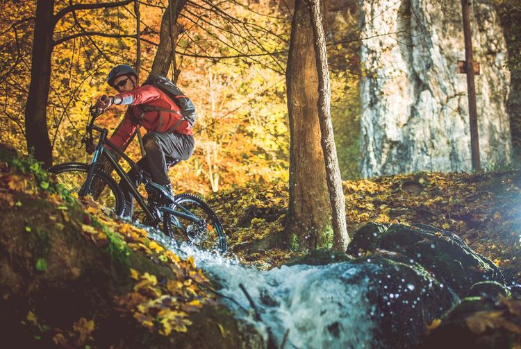 Low angle view of man riding bicycle by trees in forest during autumn