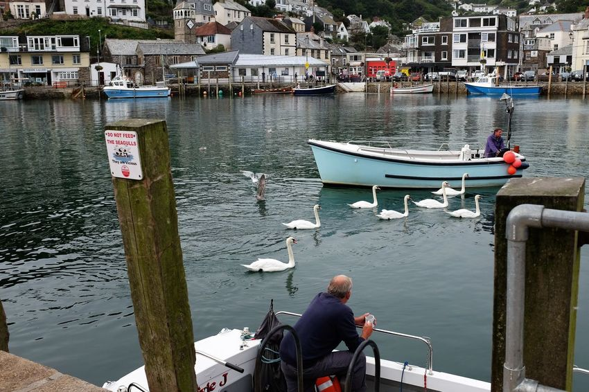 Bird Boat Men Nautical Vessel Tourism Tranquility Travel Destinations Vacations Water