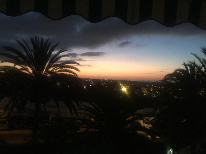 Sky Silhouette Tree Illuminated Cloud - Sky Sunset Plant First Eyeem Photo