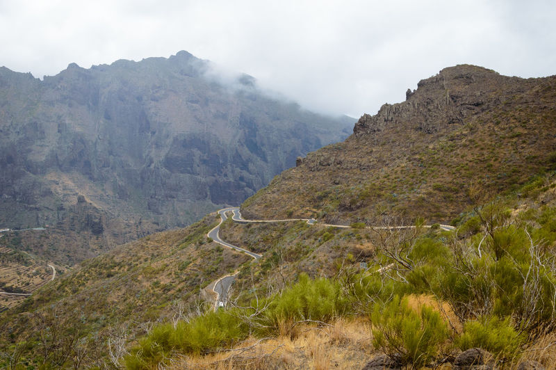 Road through foggy mountain landscape Travel Adventure Beauty In Nature Cloud - Sky Day Environment Formation Land Landscape Mountain Mountain Range Mountain Road Nature Non-urban Scene Outdoors Plant Remote Road Rock Scenics - Nature Sky Tenerife Tranquil Scene Tranquility