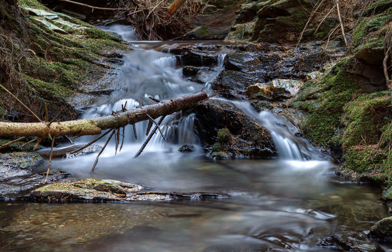 Water Beauty In Nature Scenics - Nature Flowing Water Rock Long Exposure Motion Solid Rock - Object Forest Blurred Motion Waterfall Nature Non-urban Scene Tree Land Flowing No People Day Stream - Flowing Water Outdoors Power In Nature Falling Water Isle Of Man Cringle Plantation