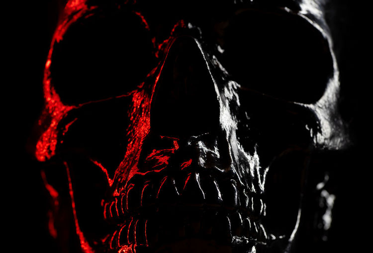 Shining skull head on dark background with neon red light. Halloween celebration, glamour, style concept. fear and horror. Close-up Indoors  Human Body Part Studio Shot Black Background Human Skeleton Bone  Red Skeleton Night Nature One Person Body Part Motion Animal Dark Focus On Foreground