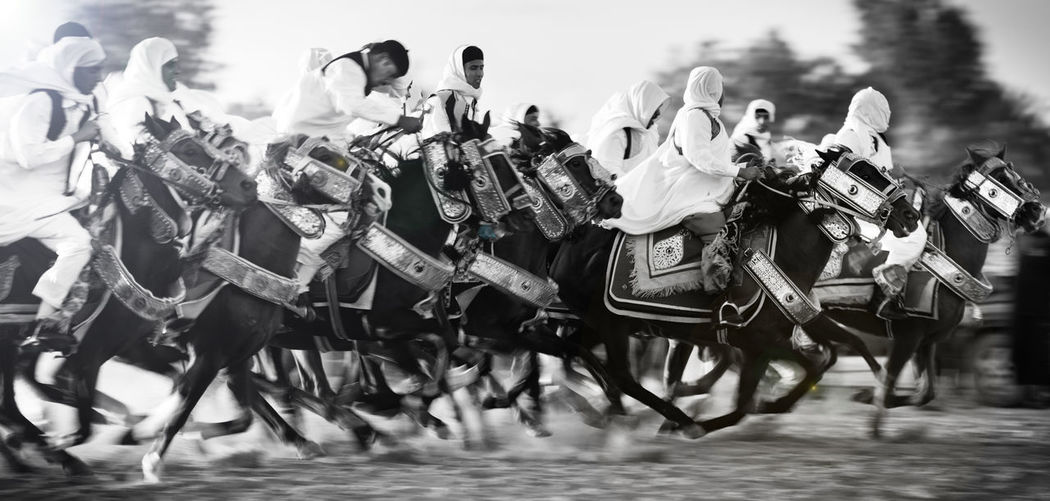 Blackandwhite Blackandwhite Photography Horses Out Of Focus People Pinting Tradition Wedding