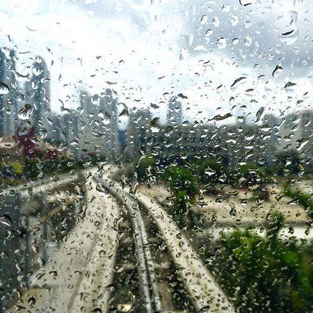 Rainy Miami day from inside metromover ... Miami Ilovemiami Metromover Metromovermiami Rain Window Geokalo Photoshoot Photographer Photooftheday Pictureoftheday Transortation