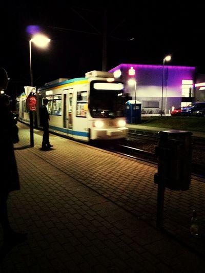 Jena Night Lights Party