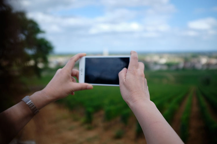Cropped hands photographing vineyard with smart phone