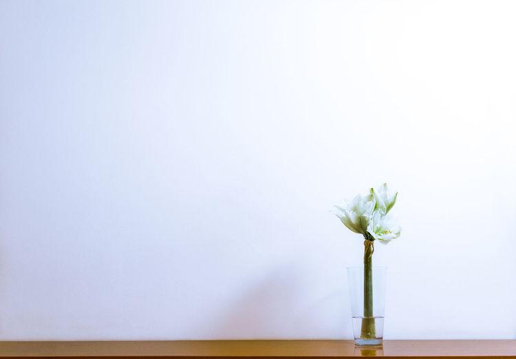 Vase with