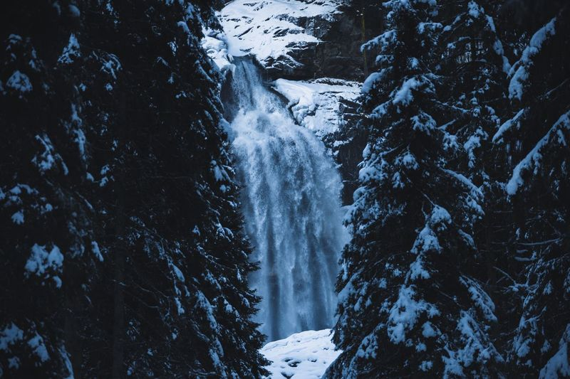 Frozen waterfall Austria Nature Landscape Snow Tree Winter Cold Temperature Plant Beauty In Nature Scenics - Nature Nature Environment Forest Land No People Non-urban Scene White Color Tranquility Tranquil Scene Day Coniferous Tree Outdoors Pine Tree