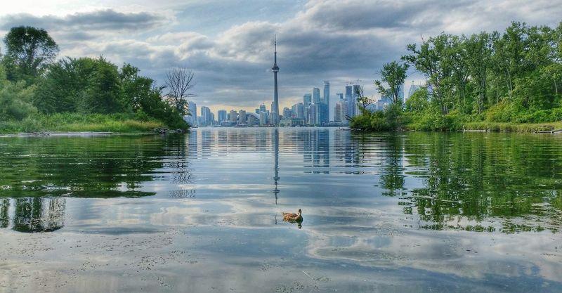 Best view of the city Toronto Islands Toronto Skyline Lake Ontario Urban Nature CN Tower Harbourfront Summer Toronto