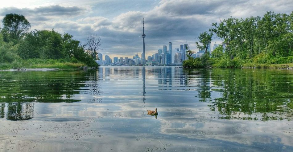 Best view of the city Toronto Islands Toronto Skyline Lake Ontario Urban Nature CN Tower Harbourfront Summer Toronto