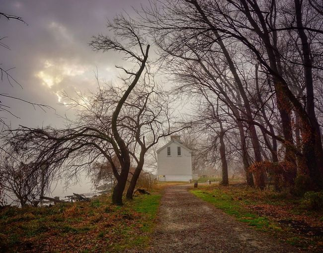 The end of the road Lighthouse Historic Building Alexandria, VA Melancholic Landscapes Foggy Fog Path Woods A Walk In The Woods Taking A Walk